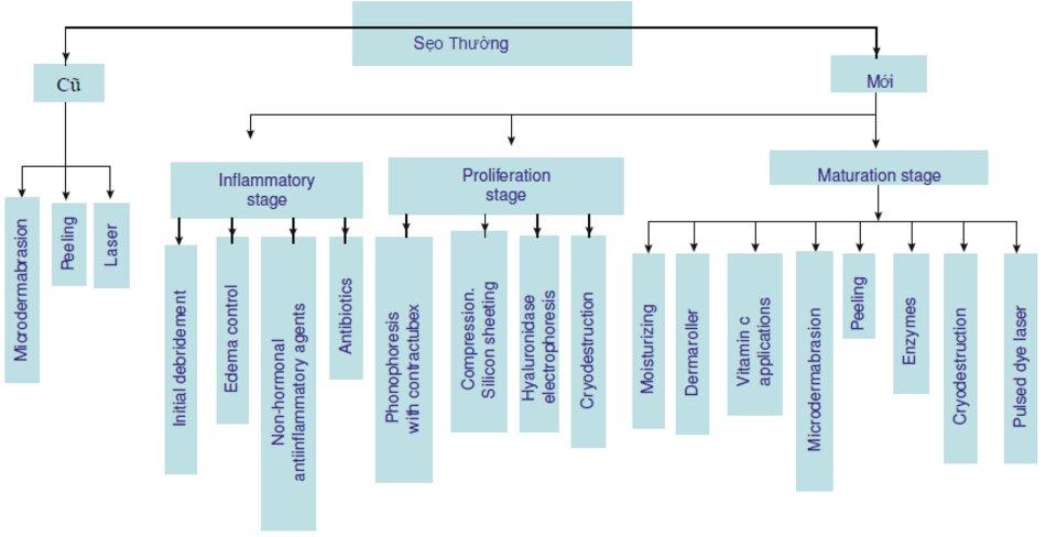 Fig. 3.9 Thuật toán xử lý và điều chỉnh vết sẹo thường