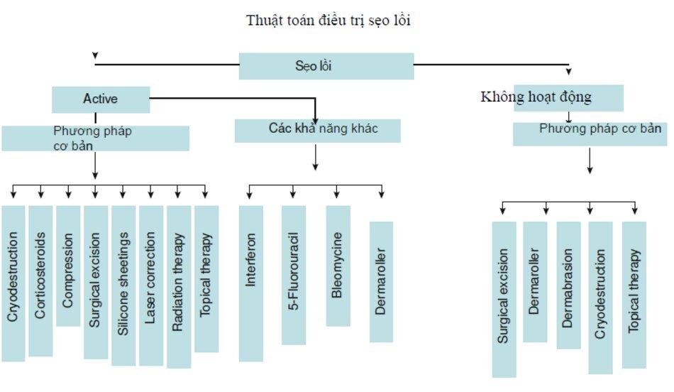 Fig. 2.20 Thuật toán điều trị sẹo lồi {bởi I. Safonov)