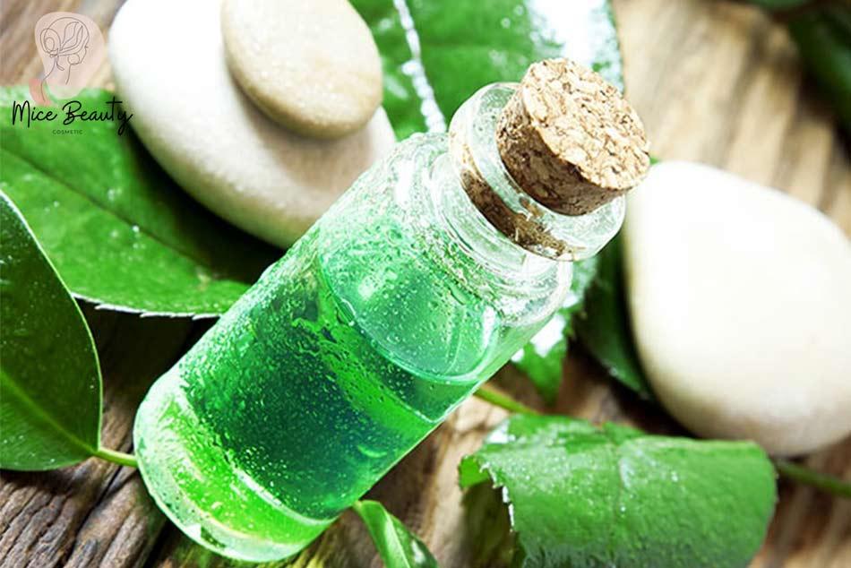 Tinh dầu trà xanh trị mụn