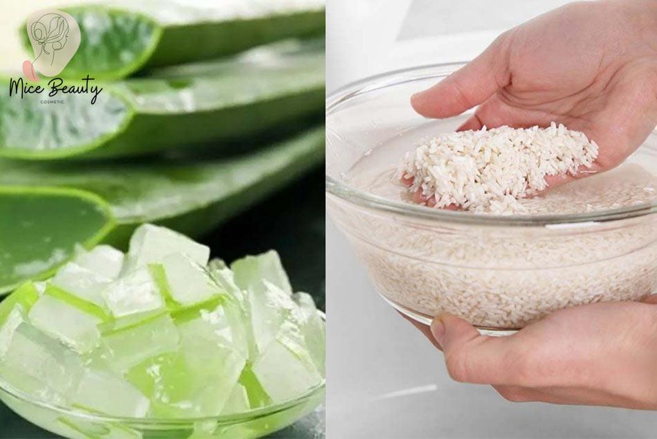 Mẹo trị mụn bằng nha đam và nước vo gạo