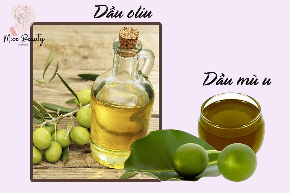 Công thức trị sẹo bằng dầu mù u và dầu oliu