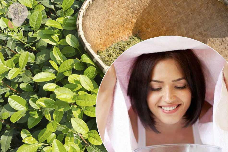 Xông mặt trị mụn ẩn bằng lá trà xanh